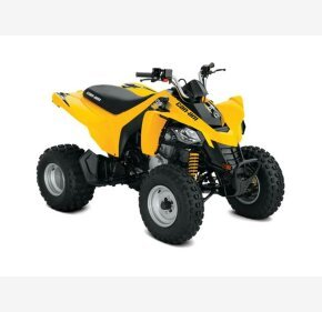 2019 Can-Am DS 250 for sale 200781749