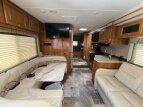 2019 Coachmen Leprechaun 311FS for sale 300319160