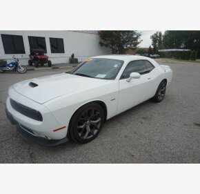 2019 Dodge Challenger R/T for sale 101342367