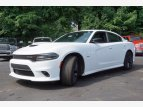2019 Dodge Charger R/T for sale 101539820