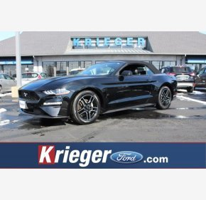 2019 Ford Mustang for sale 101094715