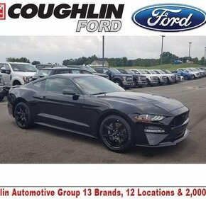2019 Ford Mustang GT Coupe for sale 101157812
