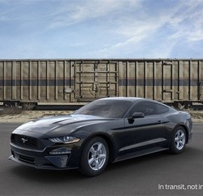 2019 Ford Mustang Coupe for sale 101207152
