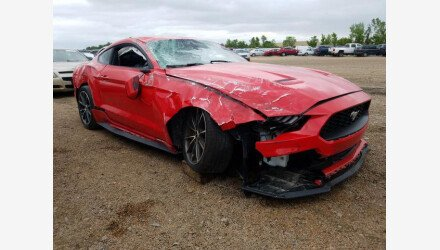 2019 Ford Mustang Coupe for sale 101341390