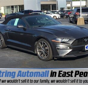 2019 Ford Mustang for sale 101345744