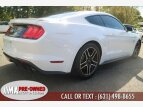 2019 Ford Mustang for sale 101389133