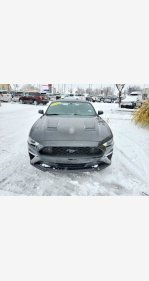 2019 Ford Mustang for sale 101418480