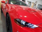 2019 Ford Mustang for sale 101486875