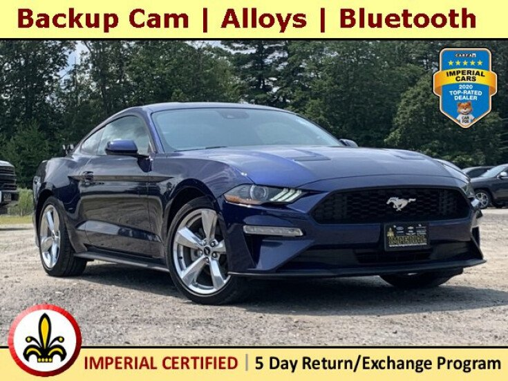 2019 Ford Mustang for sale 101547199