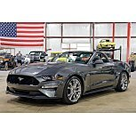 2019 Ford Mustang for sale 101604971
