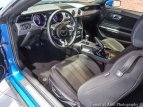 2019 Ford Mustang GT for sale 101621874