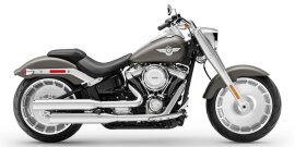 2019 Harley-Davidson Softail Fat Boy specifications