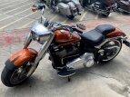 2019 Harley-Davidson Softail Fat Boy 114 for sale 200780717
