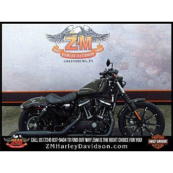 2019 Harley-Davidson Sportster for sale 200622674