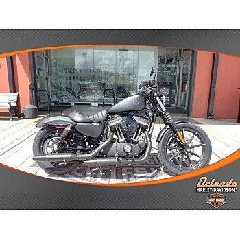 2019 Harley-Davidson Sportster for sale 200638059