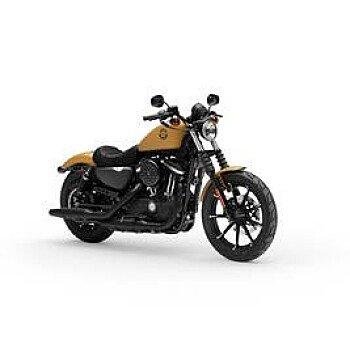 2019 Harley-Davidson Sportster Iron 883 for sale 200644140