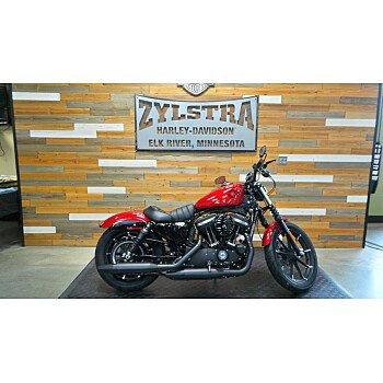 2019 Harley-Davidson Sportster Iron 883 for sale 200645790
