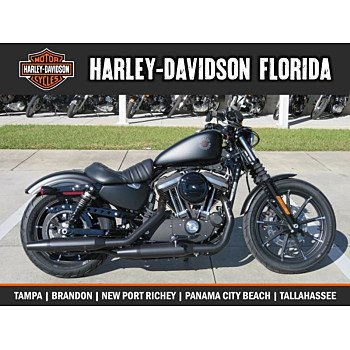 2019 Harley-Davidson Sportster Iron 883 for sale 200665808