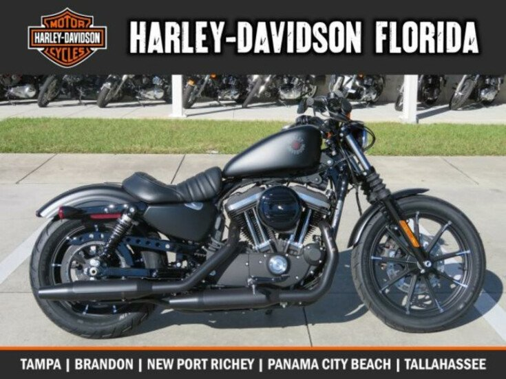 da671d4181e Street Motorcycle for sale by Harley Davidson of New Port Richey in New Port  Richey
