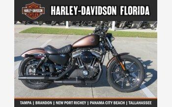 2019 Harley-Davidson Sportster Iron 883 for sale 200665811