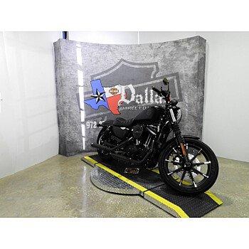 2019 Harley-Davidson Sportster Iron 883 for sale 200668969