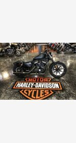 2019 Harley-Davidson Sportster for sale 200623754