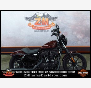 2019 Harley-Davidson Sportster for sale 200624844