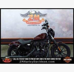 2019 Harley-Davidson Sportster for sale 200624844