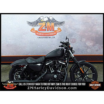 2019 Harley-Davidson Sportster for sale 200624846