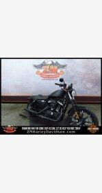 2019 Harley-Davidson Sportster for sale 200624846