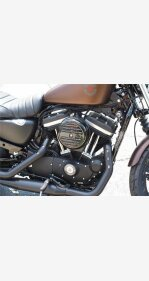 2019 Harley-Davidson Sportster Iron 883 for sale 200625827