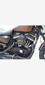 2019 Harley-Davidson Sportster Iron 883 for sale 200625827