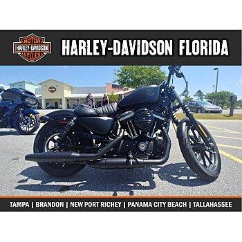 2019 Harley-Davidson Sportster Iron 883 for sale 200716906