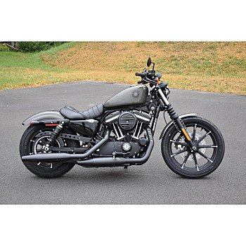 2019 Harley-Davidson Sportster for sale 200759336