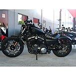 2019 Harley-Davidson Sportster for sale 200759573