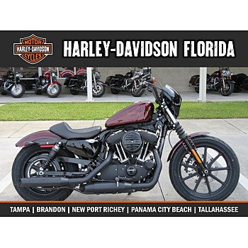 2019 Harley-Davidson Sportster Iron 1200 for sale 200769881