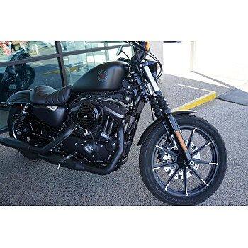 2019 Harley-Davidson Sportster for sale 200789658