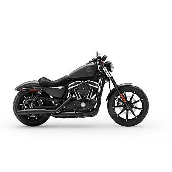 2019 Harley-Davidson Sportster Iron 883 for sale 200795503