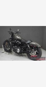 2019 Harley-Davidson Sportster Iron 883 for sale 200809152