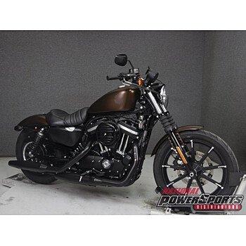 2019 Harley-Davidson Sportster Iron 883 for sale 200809156