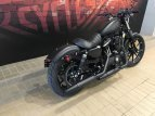 2019 Harley-Davidson Sportster Iron 883 for sale 200813265