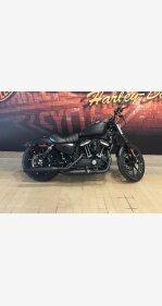 2019 Harley-Davidson Sportster Iron 883 for sale 200813335