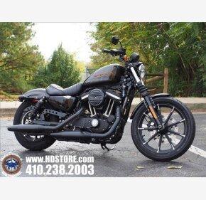 2019 Harley-Davidson Sportster Iron 883 for sale 200827578