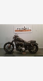 2019 Harley-Davidson Sportster Iron 883 for sale 200841584