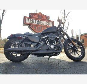 2019 Harley-Davidson Sportster Iron 883 for sale 200853980