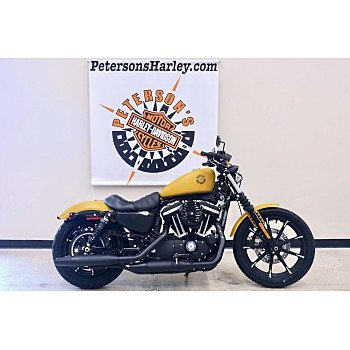 2019 Harley-Davidson Sportster Iron 883 for sale 200867797