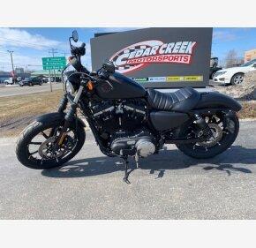 2019 Harley-Davidson Sportster for sale 200879178