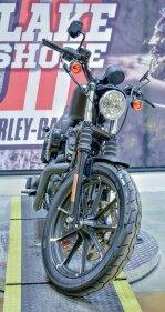 2019 Harley-Davidson Sportster Iron 883 for sale 200905300