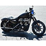 2019 Harley-Davidson Sportster Iron 883 for sale 200915708