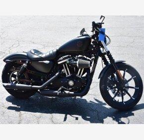 2019 Harley-Davidson Sportster Iron 883 for sale 200915708